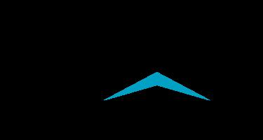 Логотип SPYCER